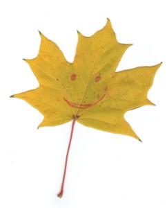 кленовый лист улыбка