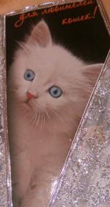 открытка_для_любителей_кошек